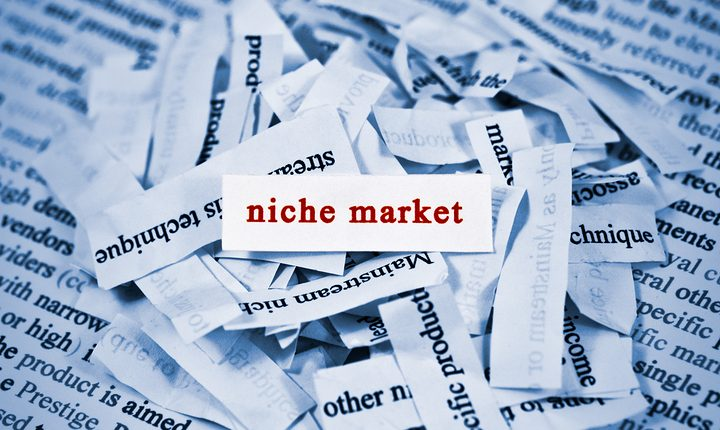 find a niche online business in the UK