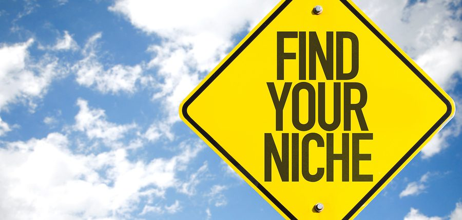 find your niche in uk