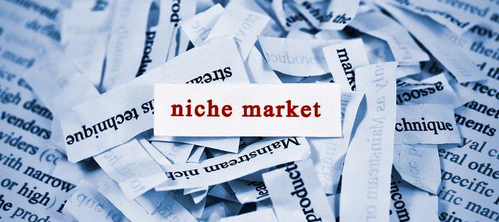 find the best niche